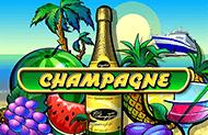 Шампанское лучшие демо в Вулкане