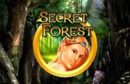 Слот Secret Forest безкоштовно